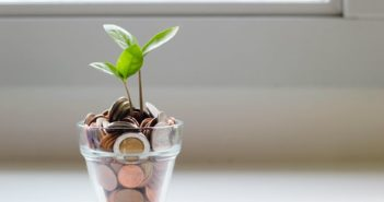 A plant growing from a pot full of coins